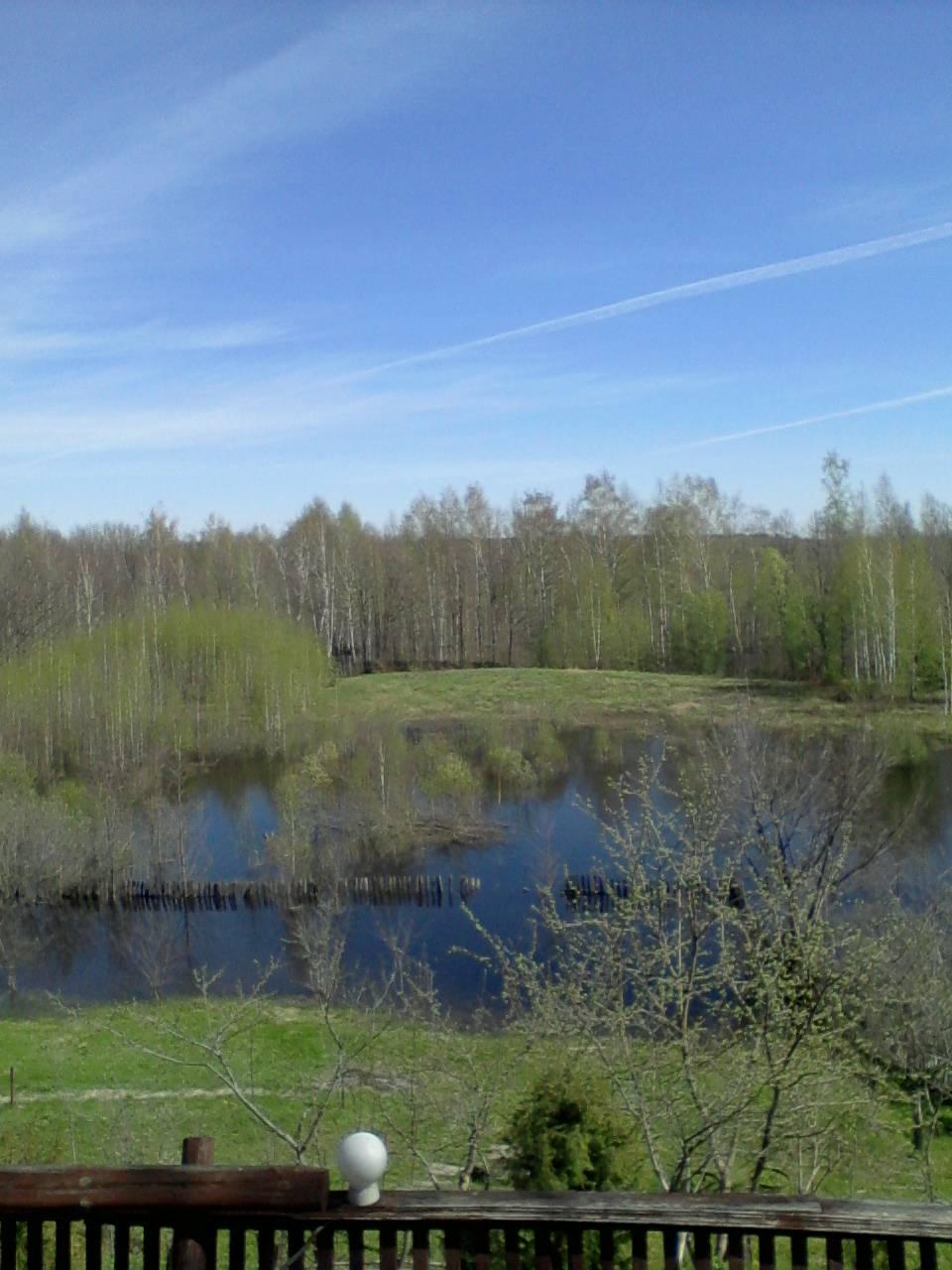 Фото1_Весна_МБОУ СОШ №9_Мальцева_Юлия